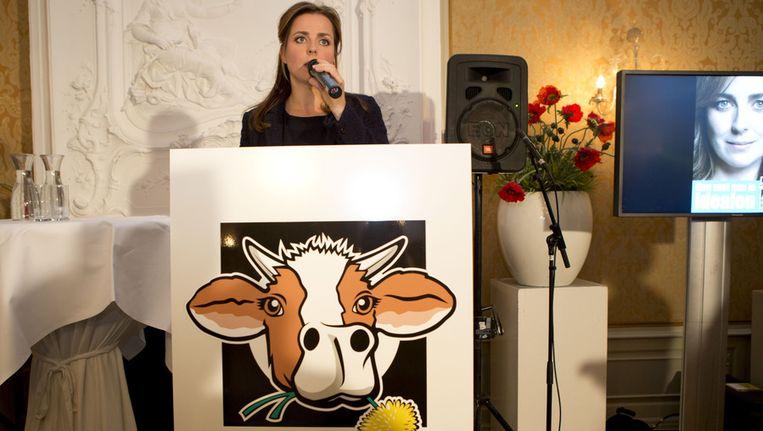 De Partij voor de Dieren doet komend voorjaar in twaalf plaatsen mee aan de gemeenteraadsverkiezingen. Beeld anp