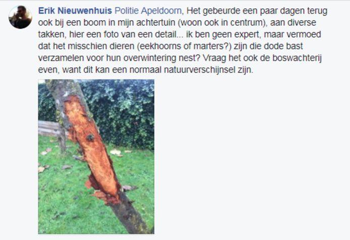 Een centrumbewoner van Apeldoorn laat een vergelijkbare situatie in zijn tuin zien.