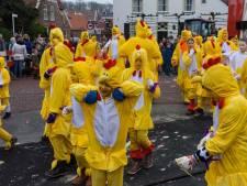Borne haalt streep door 'groot' carnaval