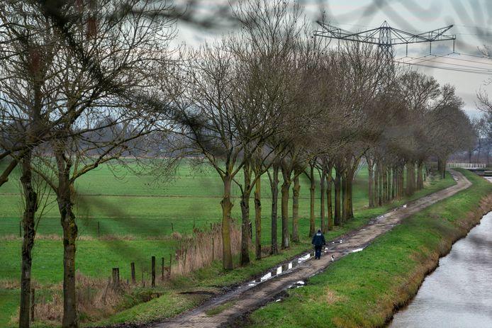 In Sompen en Zooislagen ligt tussen tussen de Haarsteegsewiel en de Eendenkooi nog agrarische grond die men wil teruggeven aan de natuur.