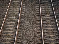 Treinen tussen Zwolle en Olst rijden weer na wisselstoring