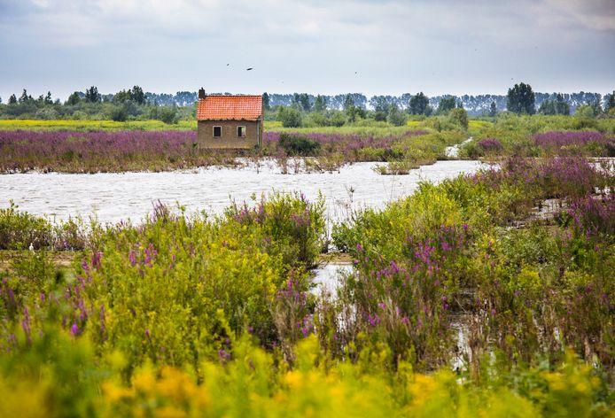 Natuureiland Tiengemeten trekt jaarlijks tienduizenden bezoekers.