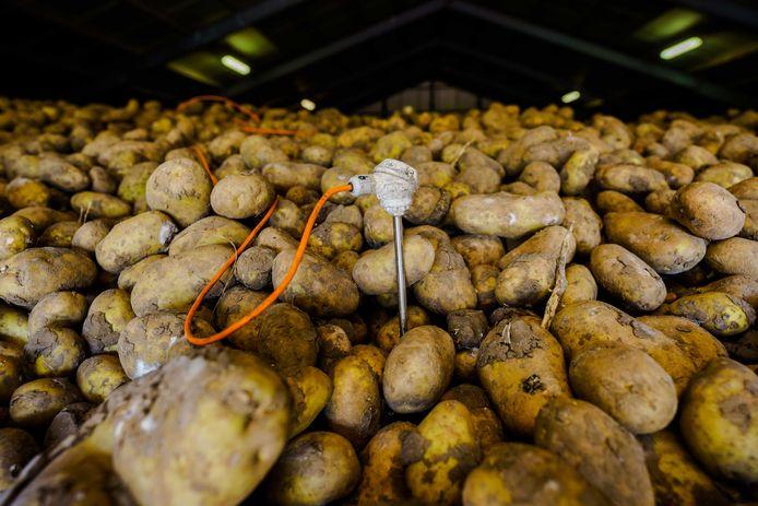 Loodsen vol aardappels hebben geen bestemming meer