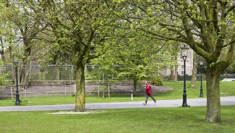 Het gras in het Oosterpark is volgens omwonenden nog te kwetsbaar voor grote evenementen. Beeld Roy del Vecchio