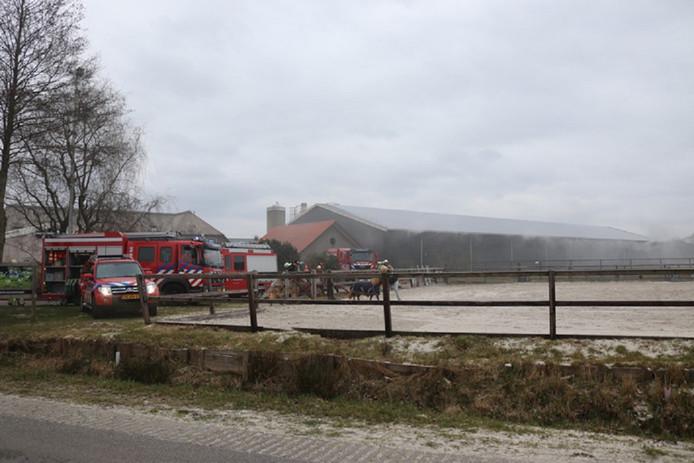 De boerderij aan de Heintjeskamperweg in Scherpenzeel.