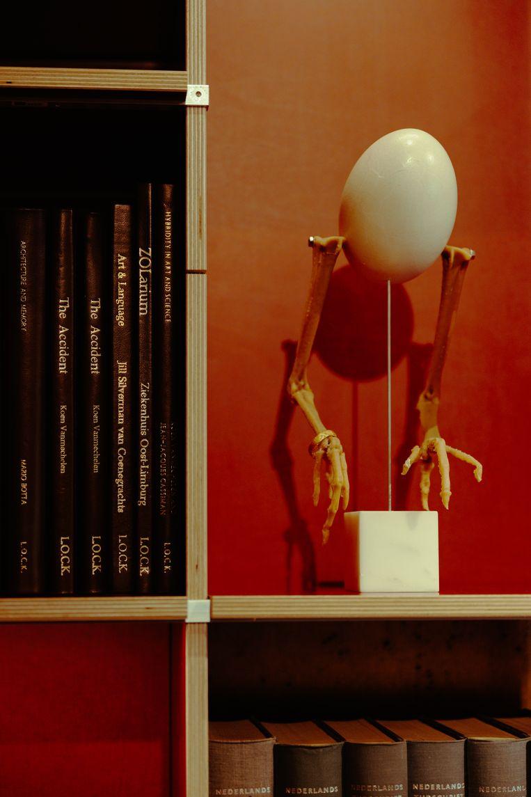 De kip blijft een centrale rol spelen in het werk van Koen Vanmechelen: 'Dat dier heeft ons echt veel gegeven.' Beeld Damon De Backer