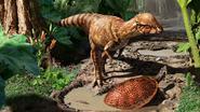 Dino ontdekt die kopstoten uitdeelde met harde schedel