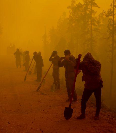 Recordbranden in Siberië: gevaar voor het klimaat en beschermde natuur, waarschuwt WNF