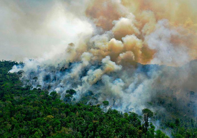Ontbossing in het Amazonewoud in Brazilië in augustus vorig jaar.