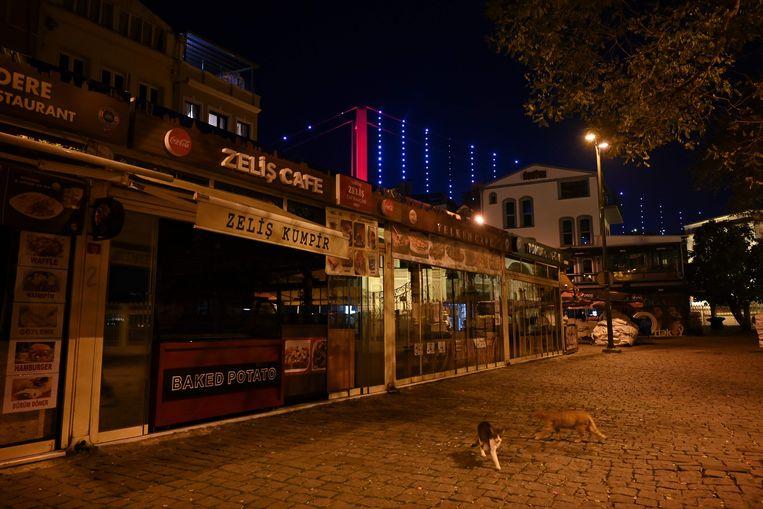 Zwerfkatten op een verlaten plein in Istanbul.  Beeld AFP