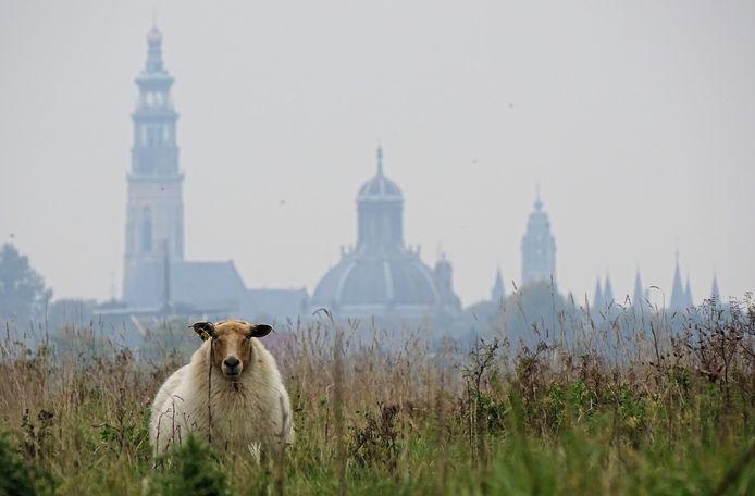 De skyline van Middelburg.
