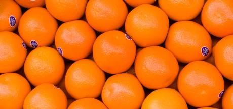 Sinaasappel-app AH verhult misstanden Braziliaanse plantage