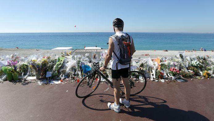 Een fietser kijkt naar de bloemenzee op de Promenade des Anglais
