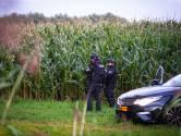 Agenten in kogelvrije vesten bewaken na wapenvondst bosperceel in Zwolle: 'Het rijdt hier af en aan'