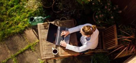 Rester connecté: comment télétravailler efficacement dans votre jardin ou sur votre terrasse?