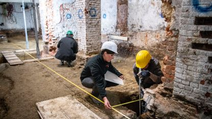 Gallo-Romeinse sporen ontdekt in kelder Antwerps stadhuis: 't Schoon Verdiep is gebouwd op afvalkuil
