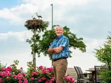 Heel de wereld geniet van de ooievaars in Dicks tuin: 'We krijgen zelfs geboortekaartjes'