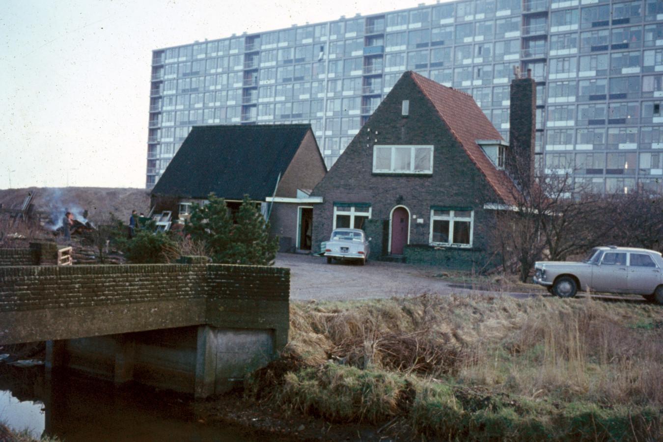 Bloemenkwekerij Van Erp aan de Dommeringdreef in 1967.