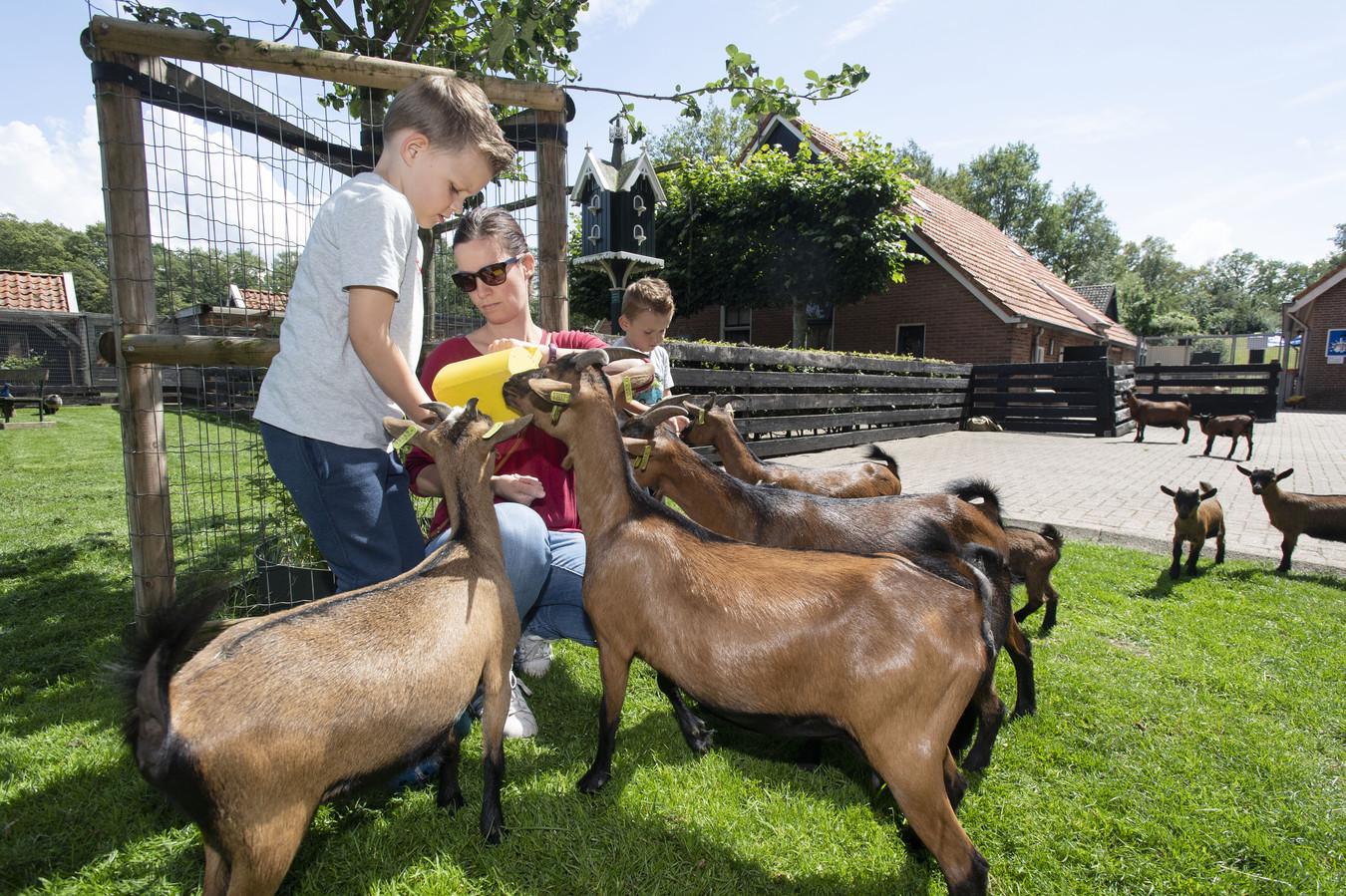 De kinderboerderij werd met sluiting bedreigd door het stopzetten van de subsidie. Die bezuiniging gaat onder druk van de raad vooralsnog niet door.