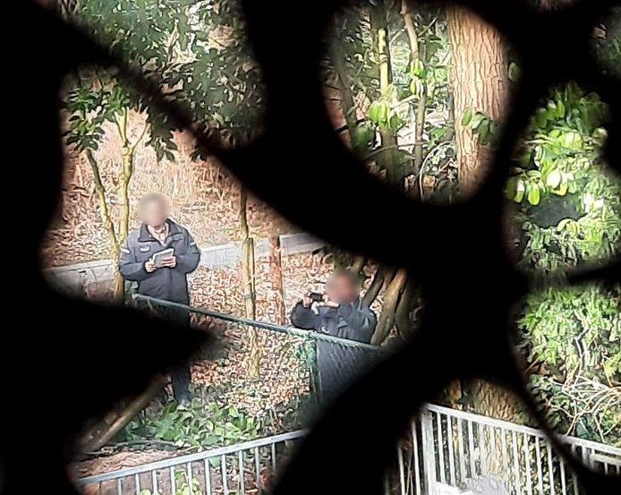 Loerende toezichthouders op bungalowpark Eper Sprengen worden vanuit een bungalow door raamdecoratie heen gefotografeerd.