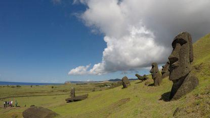 Paniek op Paaseiland: beroemde standbeelden verliezen na 500 jaar langzaam hun vorm door 'lepra'