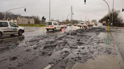Vrachtwagen verliest paar ton slib op N41