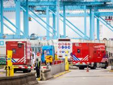 Bizarre aanhouding in Rotterdamse haven: 14-jarige verdacht van zoeken naar partij drugs