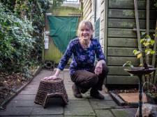 Egelfamilie groeit uit Henny's huisje: 'Alle dierenliefhebbers leefden mee'