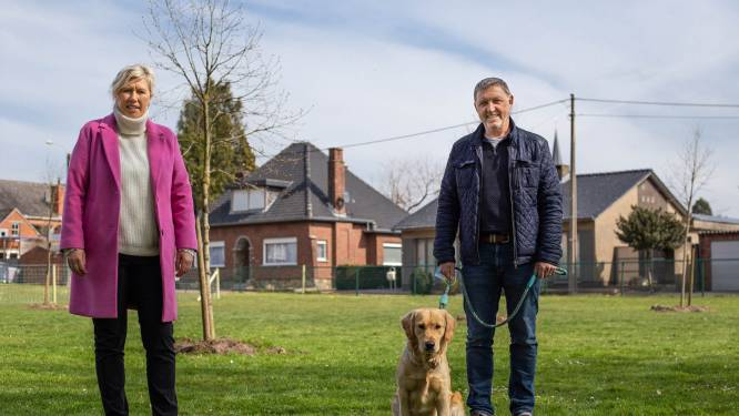 Nieuwe hondenlosloopweide achter Vinea-site in Veerle