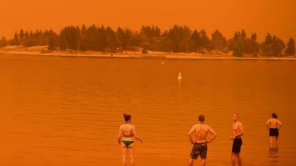 """Klimaatexpert: """"Ook in Europa verwacht ik meer bosbranden"""""""