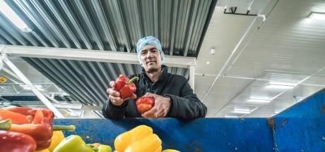 Steun voor strijd tegen voedselverspilling: 'Waarom paprikapoeder uit verre oorden?'