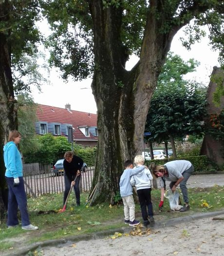 Je eigen straat vergroenen op Burendag? Groene Loper Losser-Oldenzaal helpt met bijdrage van Oranjefonds