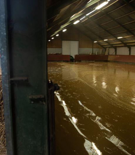 Achterhoekse liefdadigheidsactie zorgt voor tranen bij gedupeerde boeren in Limburg en België