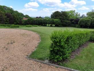 """Park Malander moet recreatieve trekpleister worden: """"En waarom het arboretum niet in ere herstellen?"""""""