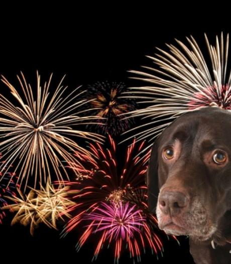 Opinie: Afsteken van vuurwerk buiten wettelijk toegestane tijden moet beboet worden
