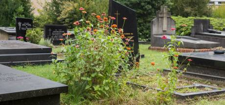 Sterft het kerkhof langzaam uit? 'Het wordt niet meer zoals het vroeger was'