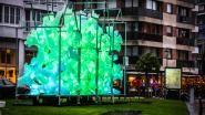 """Negen nieuwe installaties tijdens tweede Lichtkunstfestival in Knokke: """"Een echte belevenis"""""""