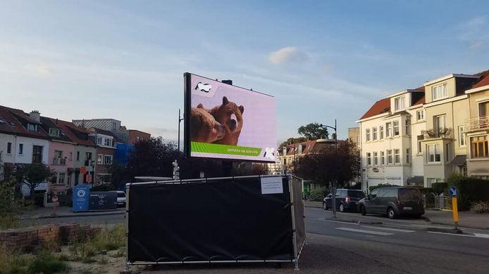 Het reclamescherm in de Berkenlaan.