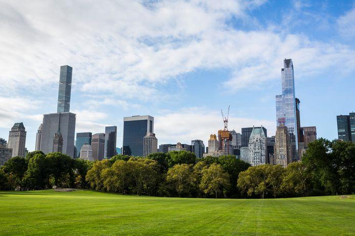De skyline van Manhattan, met links de wolkenkrabber aan 432 Park Avenue.