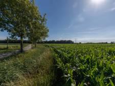 Iedereen mag zijn zegje doen over de toekomst van de Auvergnepolder