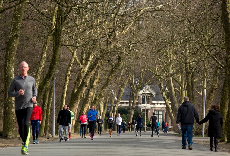 Het Vondelpark in Amsterdam, een van de parken waar de overlastgevende jongeren rondhingen. Beeld ANP