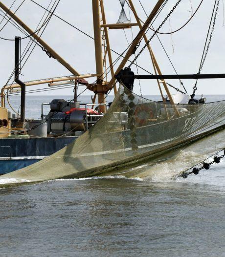 Minister laat termijn verstrijken in rechtszaak over vergunningen garnalenvissers