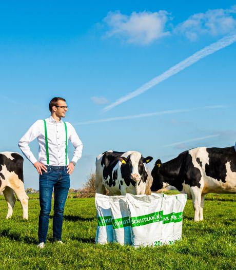Studenten stoppen pure koeienpoep in hun Schijtzakken: 'Veel beter dan kunstmest'