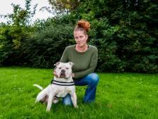 Hond Bo bijna in handen van dieven, maar Esther (44) voorkomt het: 'Heb die man twee hoeken gegeven'