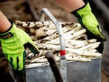 Meer en betere huisvesting nodig voor duizenden arbeidsmigranten West Betuwe