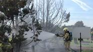 Onkruidbrander zet sparrenbomen in lichterlaaie