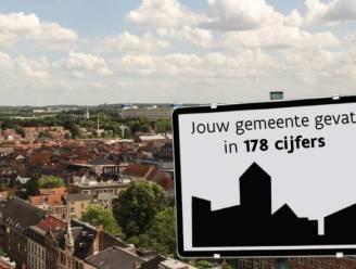 """Sint-Truiden telt meer sociale woningen dan Vlaams gemiddelde: """"Maar ook hier té lange wachtrijen"""""""