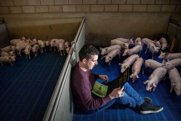 Arno van Son, bestuurder van boerenorganisatie ZLTO en varkenshouder in Valkenswaard.