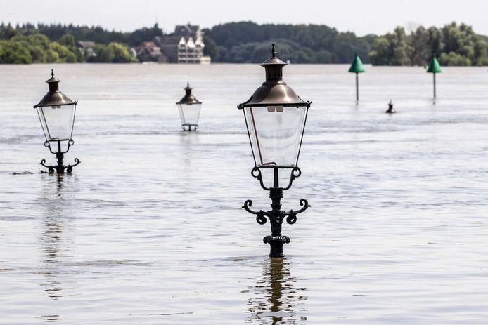 Lantaarnpalen bij Arcen gaan bijna kopje onder in het hoge water in de Maas.