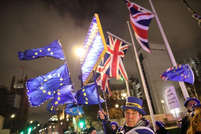 Nog steeds staan er anti-brexitbetogers voor het parlement in Londen. Beeld REUTERS